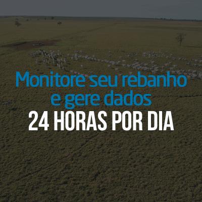 pasto nelore monitore seu rebanho e gere dados 24h por dia