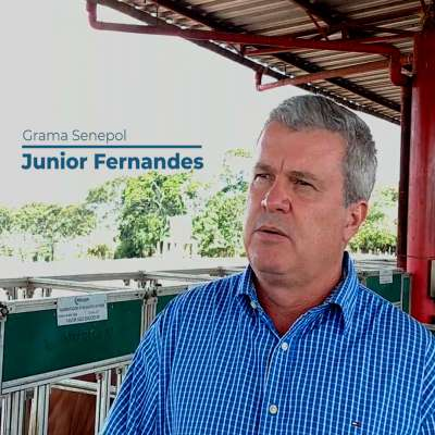 Junior Fernandes Grama Senpol