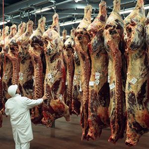Brasil exporta 121 mil toneladas de carne em Maio