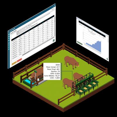 Como funciona o sistema Intergado para eficiência alimentar