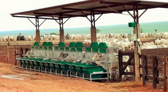 Equipamentos intergado instalados em fazenda